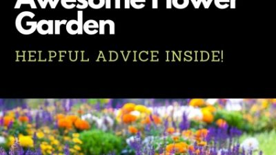 Tips For Making a Flower Garden