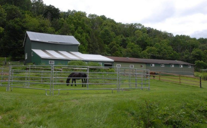 BIG Price Drop on Entry-Level Equestrian Center