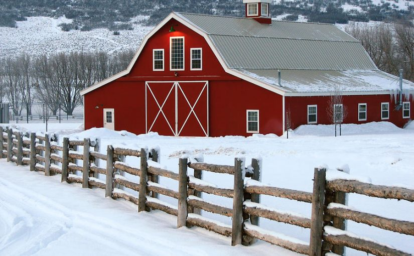 Prepare Horse and Farm for Winter Months