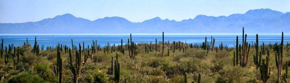 La Paz-Centenario Homes Blog