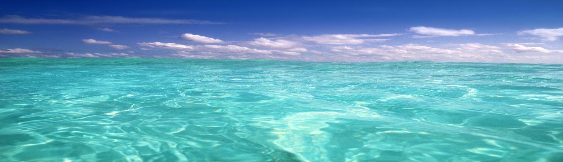 Playa Realtors- Playa del Carmen Real Estate Agency