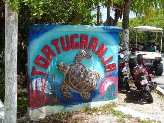 Tortugranja Isla Mujeres