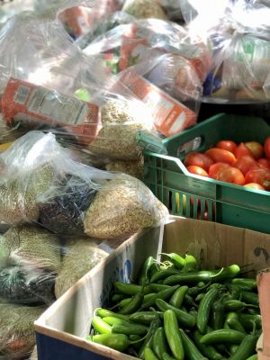 Vallarta Food Bank Update
