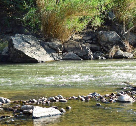 La Desembocada: the Perfect Day Trip to the River